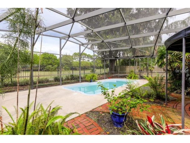 Screened-in Pool and Patio